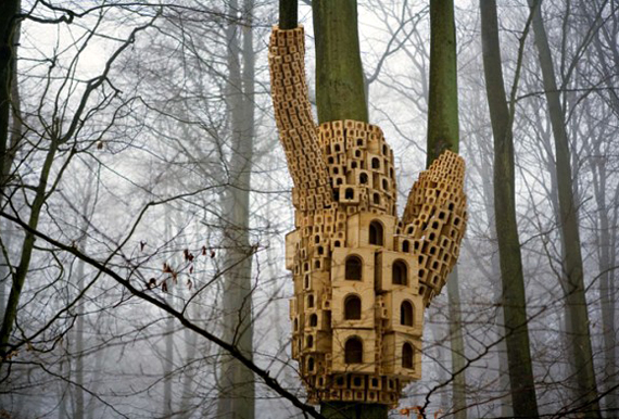 bird house planscom
